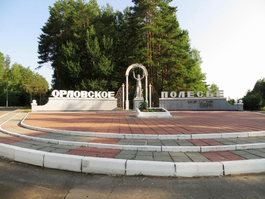 Замдиректора «Орловского полесья» потерял должность из-за диких кабанов