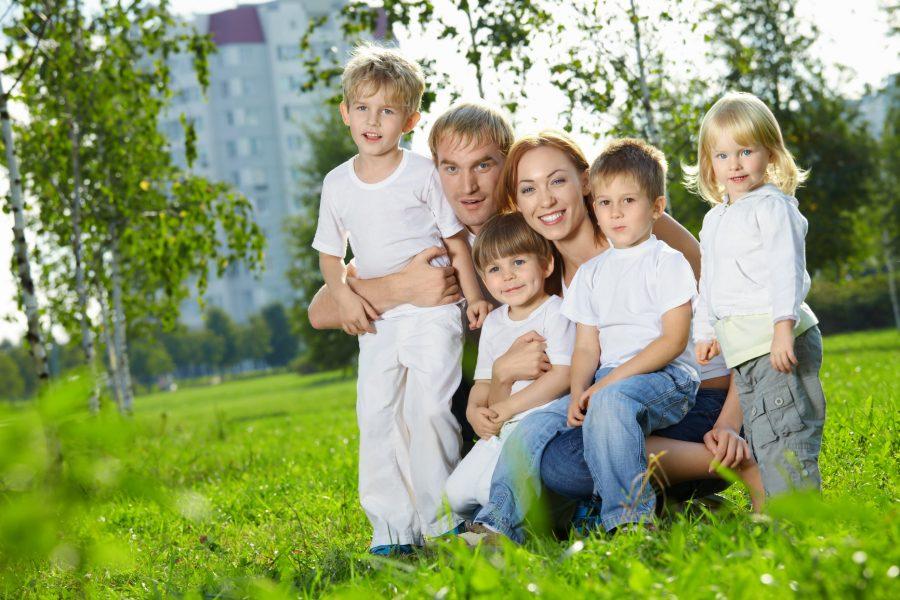 Как присваивается статус многодетная семья