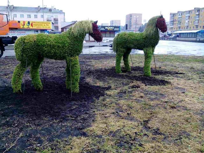 ВОрле наАвтовокзальной площади появились топиарные лошади