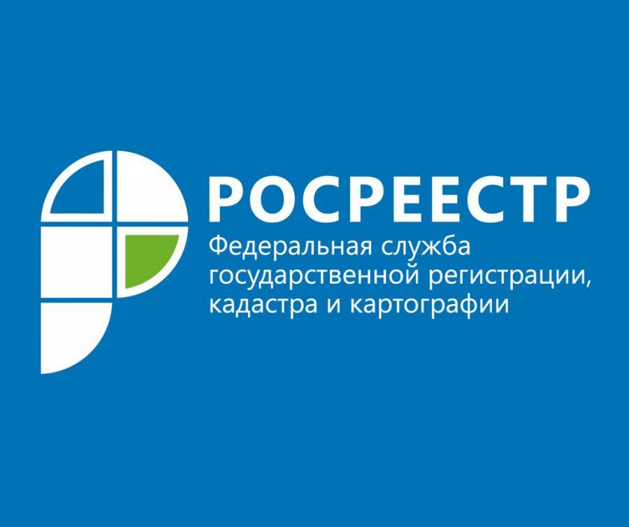 Кадастровая палата поЛенобласти упрощает процедуры для бизнеса и жителей