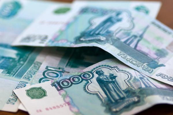 28 фермеров Новгородской области получат гранты